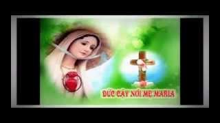 Mẹ Đầy Ơn Phúc - Lm. Thành Tâm