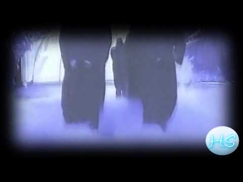Undertaker Dark Side Tribute (2012)