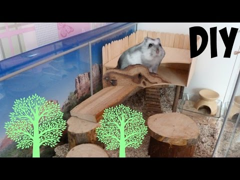 DIY Hamster Treehouse