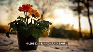 Collection Of Best 10 Wedding Nasheeds   مجموعة افضل الاناشيد للاعراس Without Music