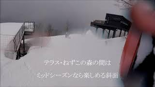 今春最後の雪降り、白馬岩岳スキー場。 絶景テラス、白馬マウンテンハー...