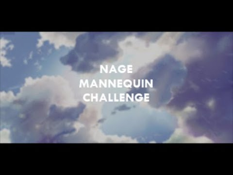 NAGE | Mannequin Challenge 2016
