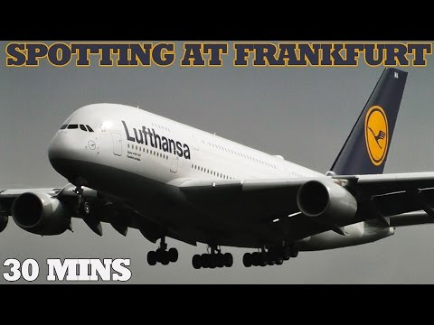 30 Mins of Awesome Plane Spotting at a Busy Frankfurt am Main Airport (FRA/EDDF) | HEAVIES GALORE!