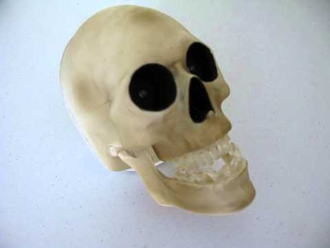 "Gemmy Motion Sensor ""Halloween"" Movie Theme Song Light Up Skull"