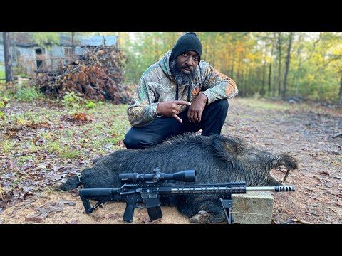 Hog hunting/6.5 Grendel/Electric Pole/Cigars/CnB Outdoors