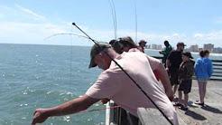 Catching Fish at Jacksonville Beach Pier, Jacksonville, FL