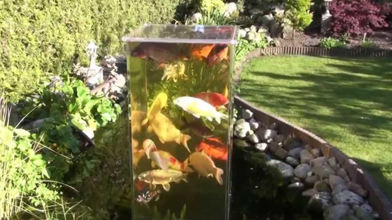 Mein koi aussichtsturm im gartenteich bei tag 10 youtube for Gartenteich koi