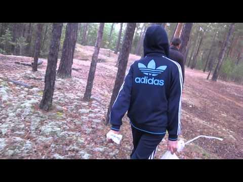 Охота на грибы - Лес Свердловская область