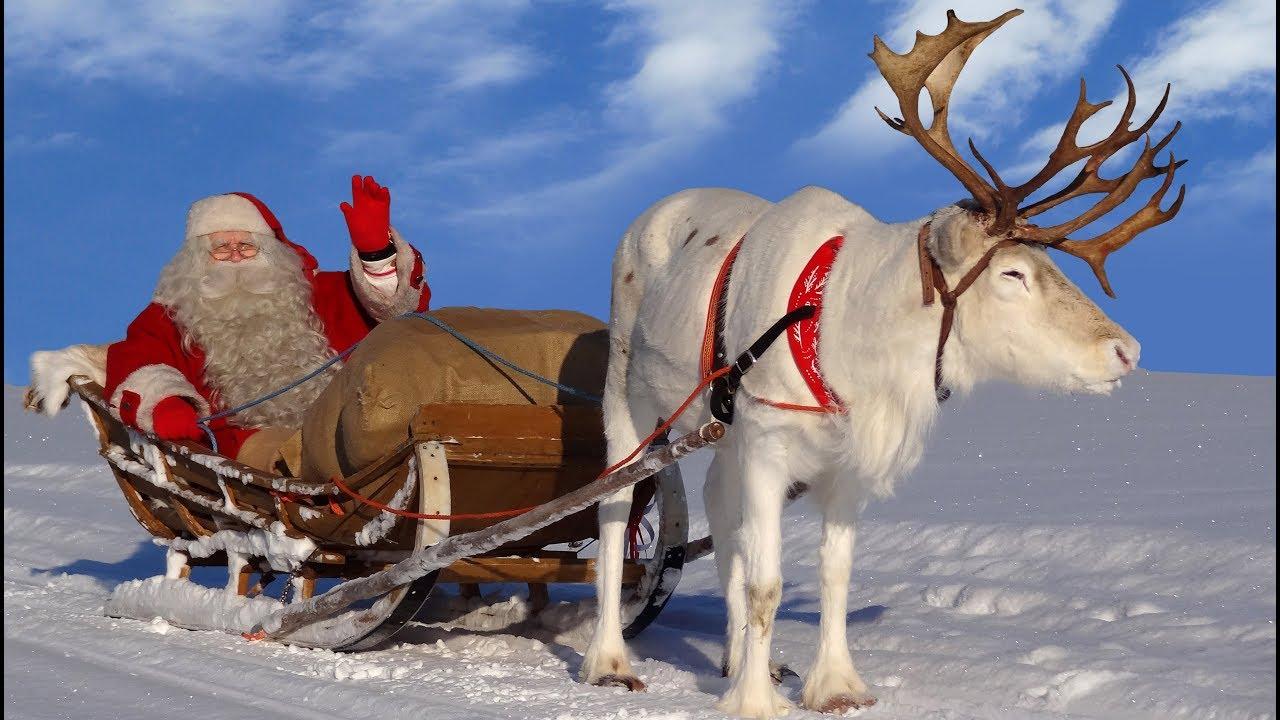 Babbo Natale Con Le Renne Immagini.Babbo Natale Le Piu Belle Escursioni Con Le Renne Di Santa Claus Lapponia Finlandia Per I Bambini