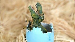 baby dinosaur egg hatches