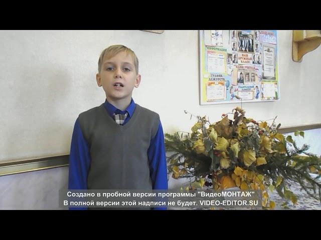 Изображение предпросмотра прочтения – СветланаБирюкова читает произведение «Бежит тропинка с бугорка» М.И.Цветаевой