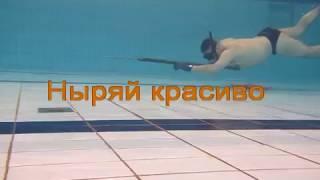 Обучение подводной охоте во Владивостоке