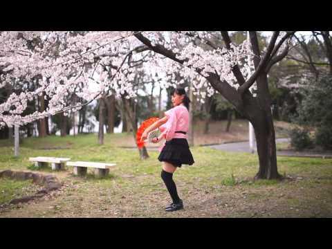 【足太ぺんた】千本桜 踊ってみた【桜の下で】