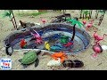 Fun Sea Animals Toys In The Sandbox For Kids - Learn Animal Names