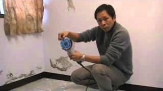 樂土- DIY壁癌處理初步- 牆壁放血建築醫學