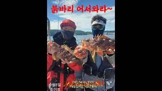 여수조이호 09월8일 조황입니다 ~붉바리대박~
