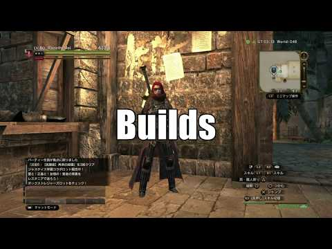 DDON - Warrior Guide (Skills and Builds)