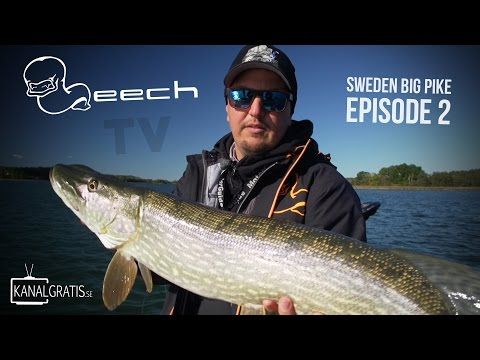 Leech TV - Sweden Big Pike - Episode 2 (with English subtitles)