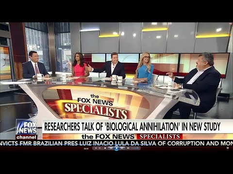 07-12-17 Kat Timpf on The Fox News Specialists - Complete, Uncut Show