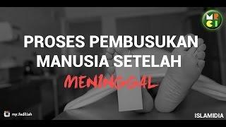 PROSES PEMBUSUKAN MANUSIA SETELAH MENINGGAL