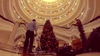 Christmas Tree in Dubai - Kempinski Hotel Palm Jumeirah