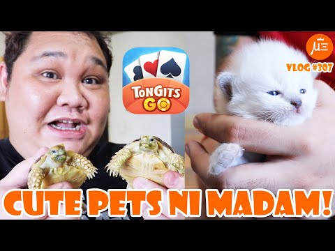 A DAY IN OUR LIFE W/ OUR CUTE PETS! #BuhayKwarantin | VLOG #307
