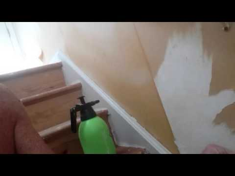 how to remove wallpaper with chomp madison ct - Wallpaper Removal Solution