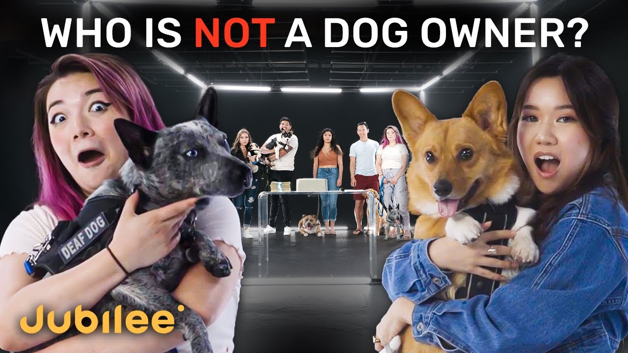 Download 6 Dog Owners vs 1 Fake | Odd One Out