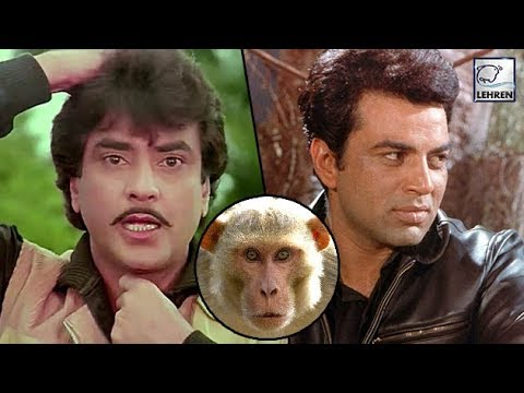 This Actor Once Comapred Dharmendra & Jeetendra To A Monkey
