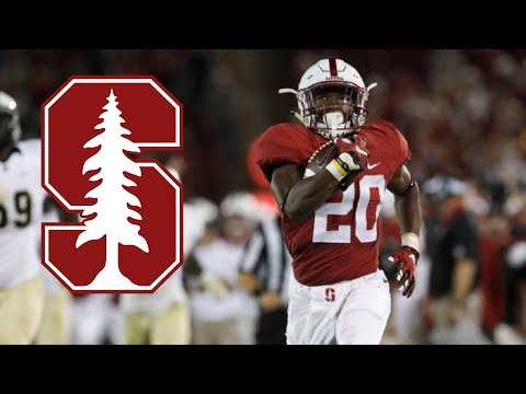Stanford RB Bryce Love Official Highlights || Fastest RB In College Football