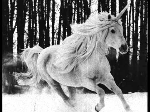 Nocternity  A Fallen Unicorn