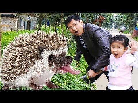 Trò Chơi Cho Con Nhím con Đà Điểu con Dê và Khỉ Ăn Bim Bim ♥ Bé Bún và Bé Bắp ♥
