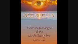 SEE SHELLS with Michelle Hanson-Next Top Spiritual Author.wmv