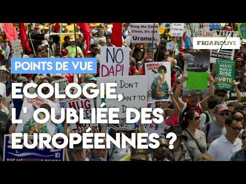 Ecologie : priorité des Français mais oubliée du débat européen