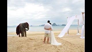 Свадьба на Шри-Ланке Анюты и Павла