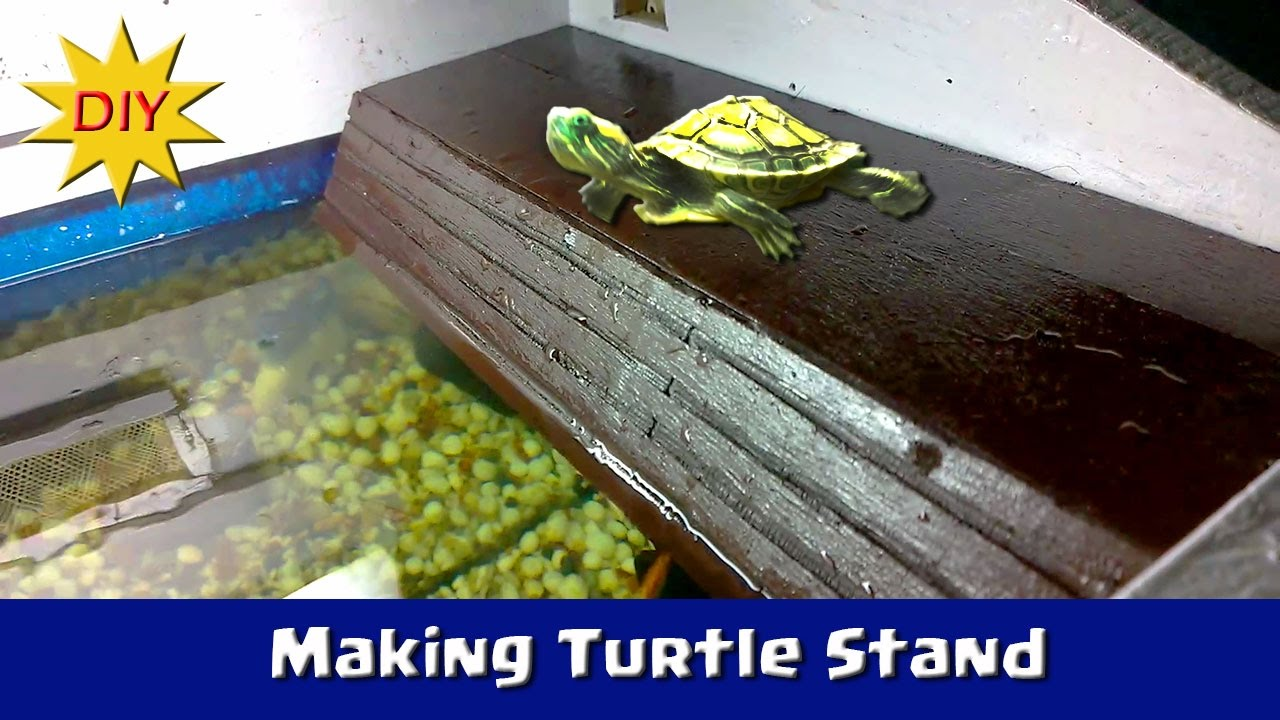 Making A Turtle Dock From Scratch Diy