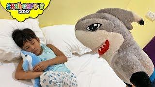 Mr. Shark vs. Dolphin |
