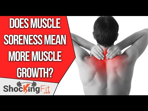 Thumbnail: Do You Have To Be Sore After Every Workout to Build Muscle? #AskMario 43