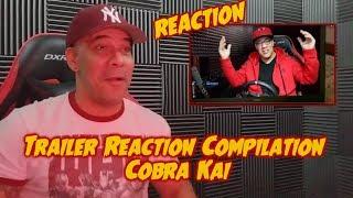 Trailer Reaction Compilation - Cobra Kai REACTION to REACTION