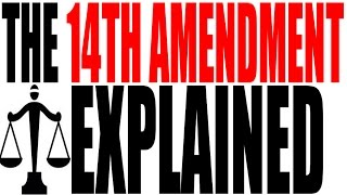 Brain Wrinkling the 14th Amendment