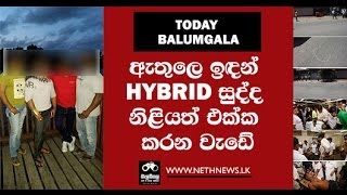 Balumgala - Hybrid Sudda - 11th January 2017