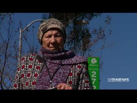 Bus Fight | 9 News Perth