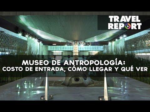 Museo de Antropología: costo de entrada, cómo llegar y qué ver
