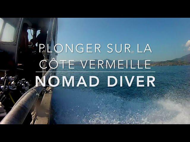 Plongée sur la Côte Vermeilles by Nomad Diver - Port Vendres Juillet 2018