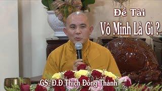 Vô Minh Là Gì ? GS. ĐĐ Thích Đồng Thành tại Hiền Như Tịnh Thất ngày 18-11-2017 .