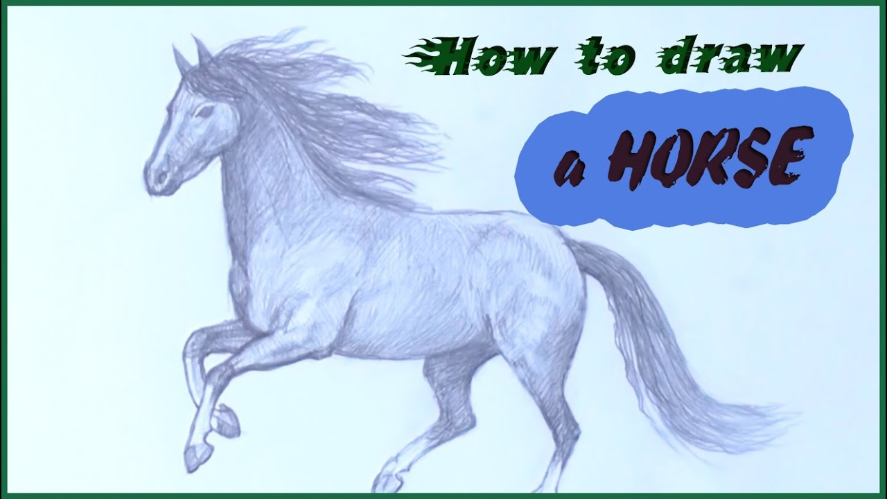 Drawing Lessons To Draw A Horse With Pencil