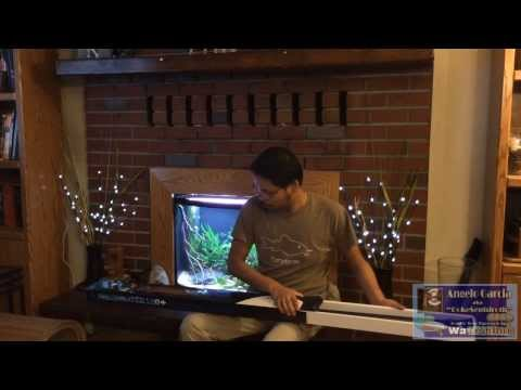 Current USA Freshwater Satellite LED+ Unboxing and Review