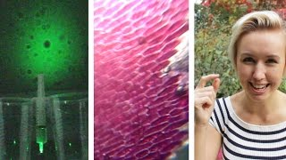 One of Sally Le Page's most viewed videos: 3 DIY Microscopes with a Laser Pen | Shed Science