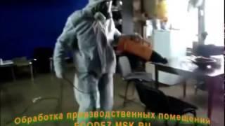 Уничтожение насекомых, тараканов и клопов в Москве холодным туманом - ecodez msk ru(, 2017-04-06T21:15:00.000Z)