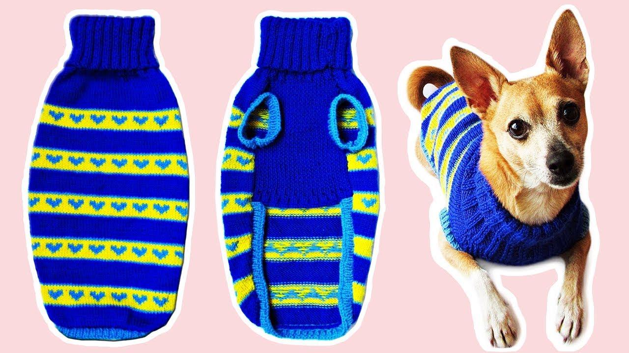вяжем свитер для собаки Diy Dog Sweater Youtube
